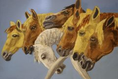 Lex van Pelt - Paarden (7x)