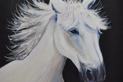 Lyda te Linde - Paardenhoofd 1