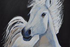 Lyda te Linde - Paardenhoofd 2