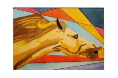 Lex van Pelt - Renpaard